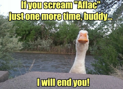 buddy Aflac your goose is cooked funny - 7672449536