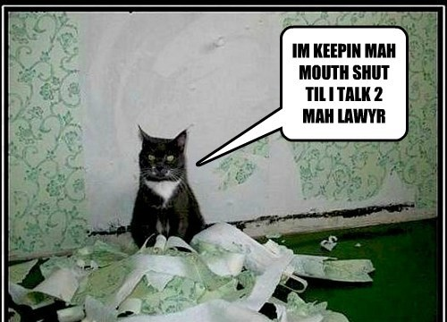 lawyer plead the fifth crime funny