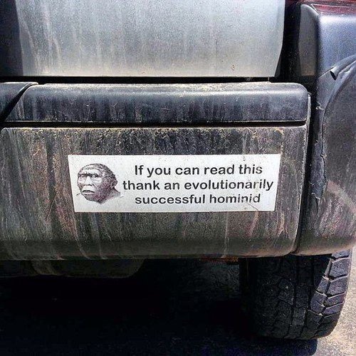 evolution,bumper sticker,science,funny