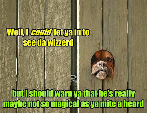the wizard of oz fence magical funny - 7672926208