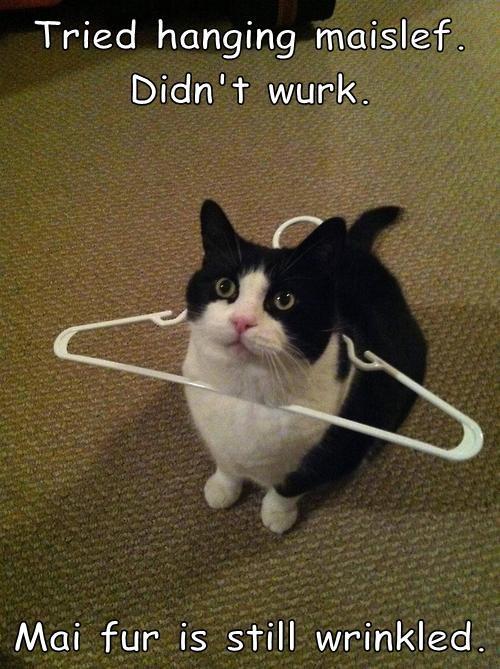 wrinkles hanged hanger funny - 7673084928