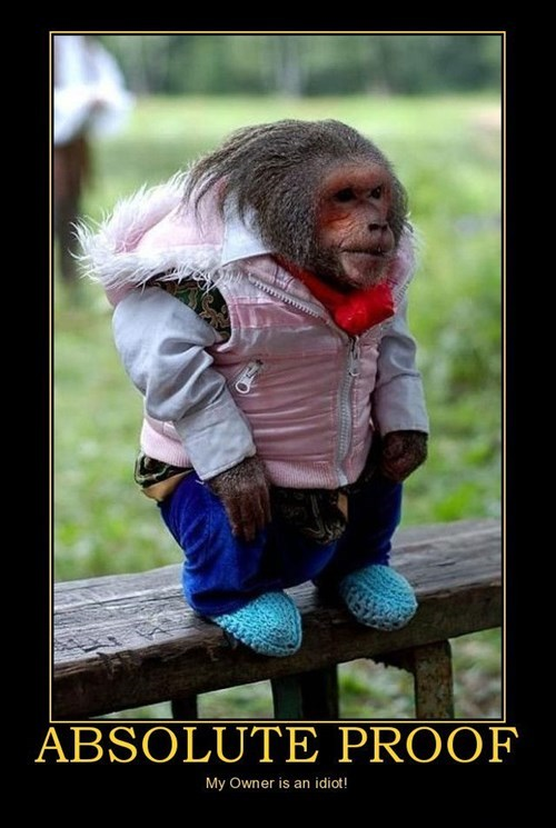 horrible wtf owner pet monkey - 7673195520