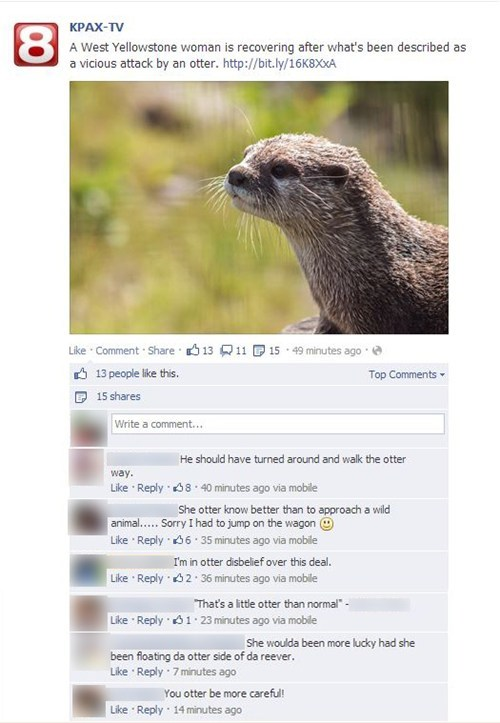 Local News puns otters facebook funny - 7673297664