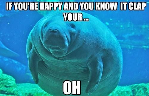 manatees,Memes,Sea Cow