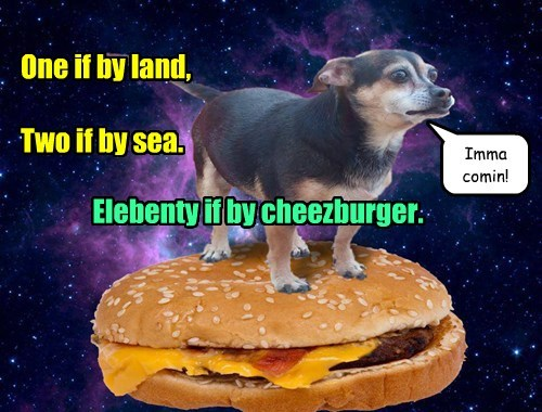 Cheezburger Image 7674962176
