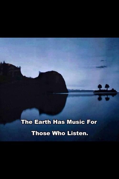 nature reflection violin - 7674980608