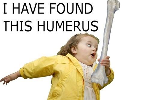 bones puns humerus - 7675092480