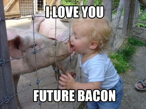 Babies,pig,bacon,g rated,parenting
