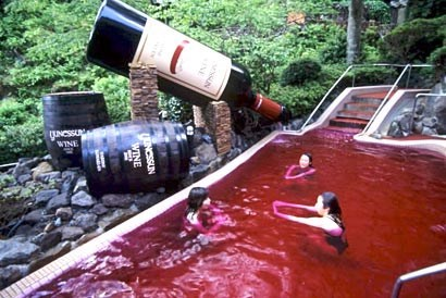 summer swimming wine pool funny