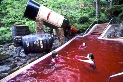 summer swimming wine pool funny - 7675361792