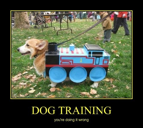 costume,choo choo,cute,training