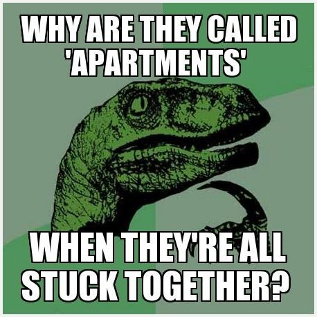 apartments Memes philosoraptor - 7675636736