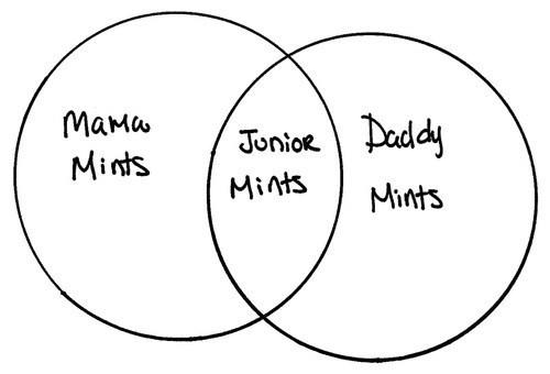 birds and bees junior mints venn diagram mints - 7677084928