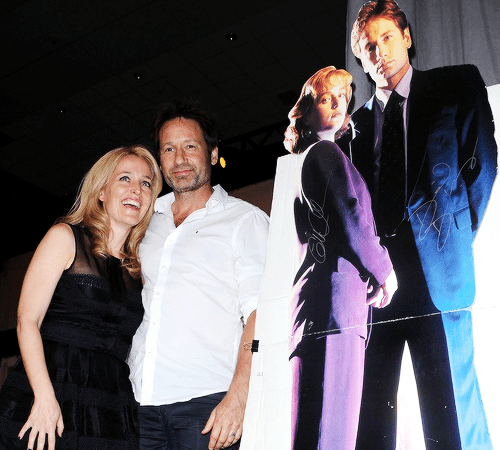 gillian anderson David Duchovny x files