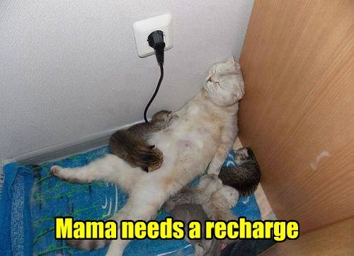 nap cocktails recharge mom - 7677294592