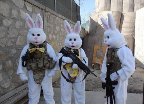 bunnies guns wtf russians funny - 7677312000