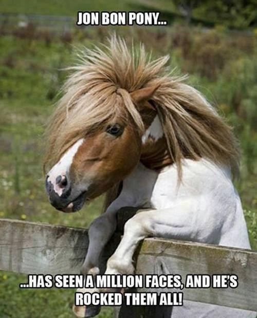 ponies jon bon jovi puns funny - 7677387776
