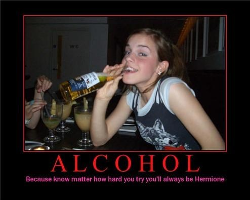 alcohol Harry Potter hermione funny - 7677751040
