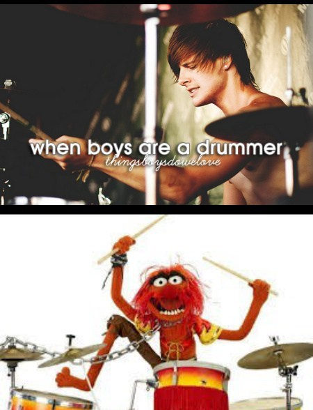puns drummers animal funny - 7677922048