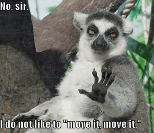 madagascar misunderstanding lemur move it - 7678613504