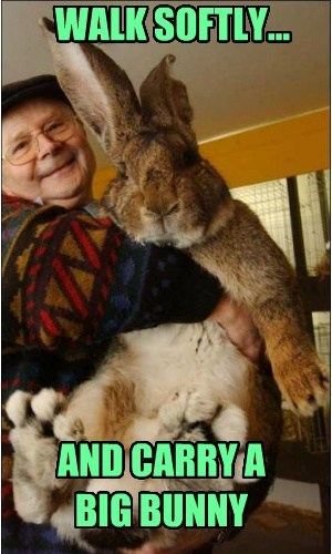 WALK SOFTLY... AND CARRY A BIG BUNNY