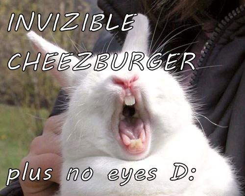 Cheezburger Image 7682105856