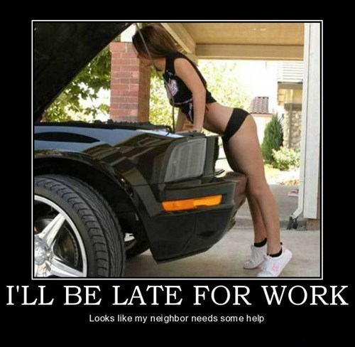 Sexy Ladies car funny - 7682147840