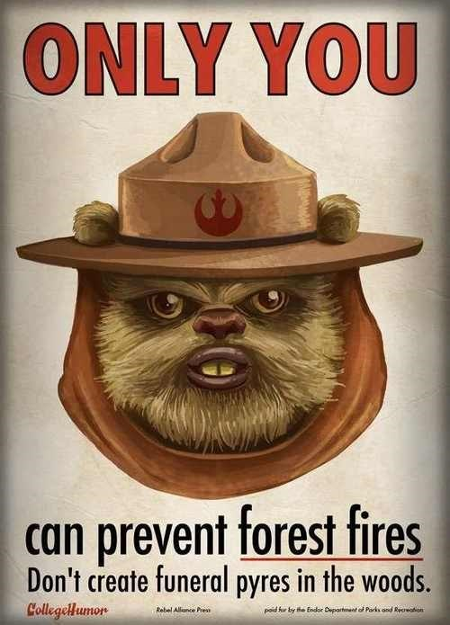 forest fire,star wars,ewok,Smokey the Bear