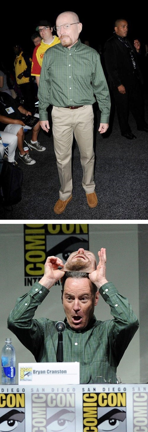 Bryan Cranston Disguises Himself at Comic Con by Dressing Up as... Himself...