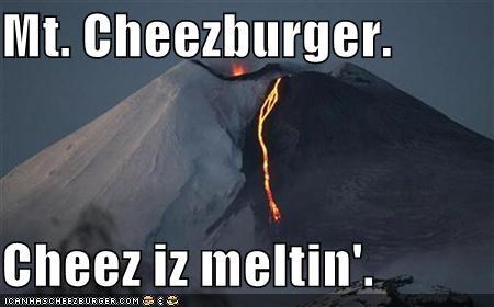 Cheezburger Image 768384768