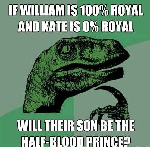 Harry Potter royal baby celeb - 7684088576