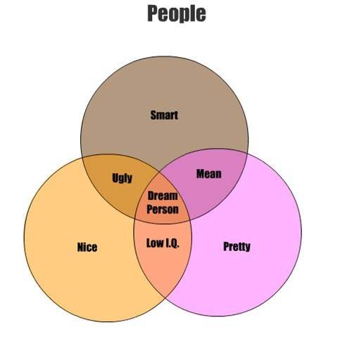 People Smart Pretty Nice Mean Ugly Low I.Q. Dream Person