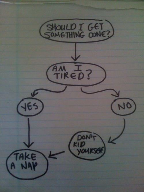 nap procrastinator tired decision tree