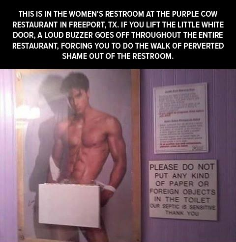 hot guys,womens-restroom,walk of shame,bathroom,purple cow restaurant,restrooms