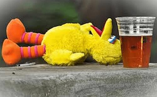 beer drunk big bird funny - 7686335488
