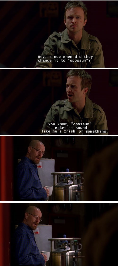 aaron paul,breaking bad,walter white,bryan cranston,jesse pinkman