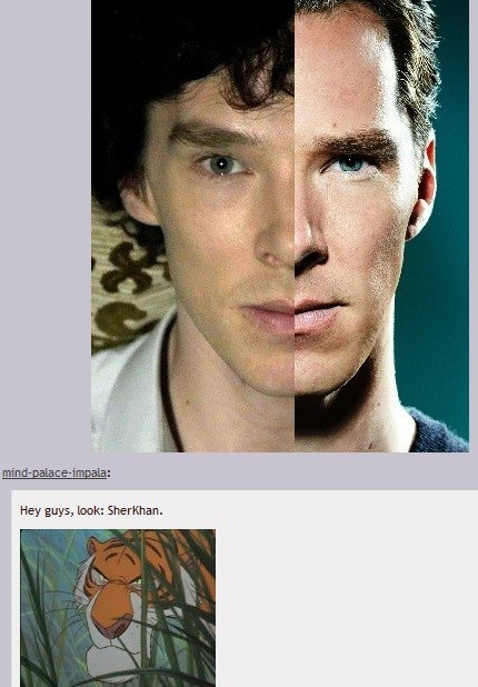 benedict cumberbatch,Jungle Book,Kahn,Sherlock,Star Trek