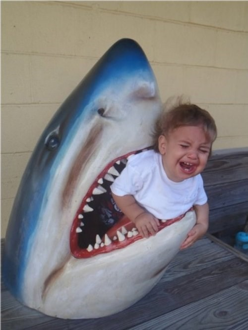 baby,shark,g rated,parenting,funny