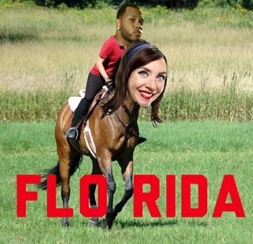 flo puns horses flo rida funny - 7688655360