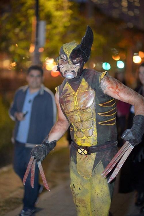 cosplay,zombie,superheroes,wolverine