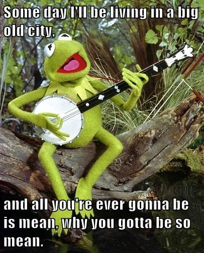 kermit the frog taylor swift Music muppets - 7689011456