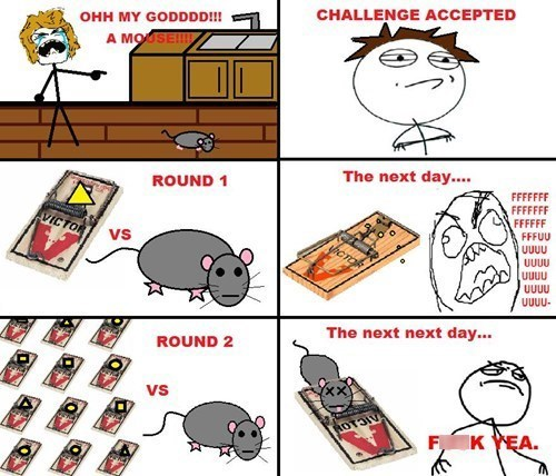 Challenge Accepted mice mousetraps