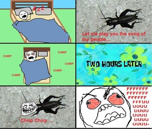 crickets sleeping - 7689086720