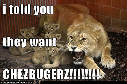 Cheezburger Image 7690664448
