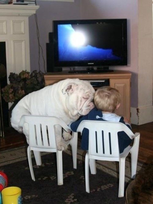 dogs kids cute parenting - 7691035648