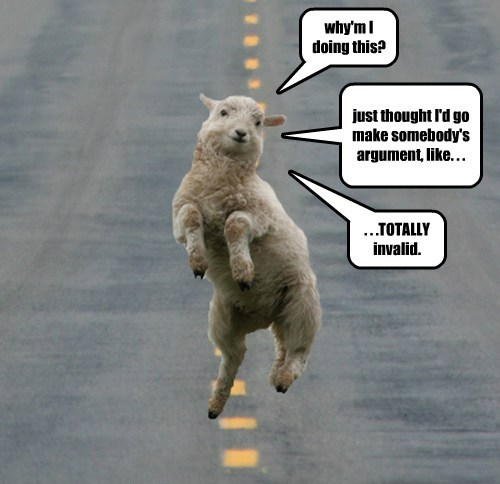 how smart are sheep