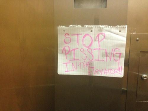 elevators,peeing