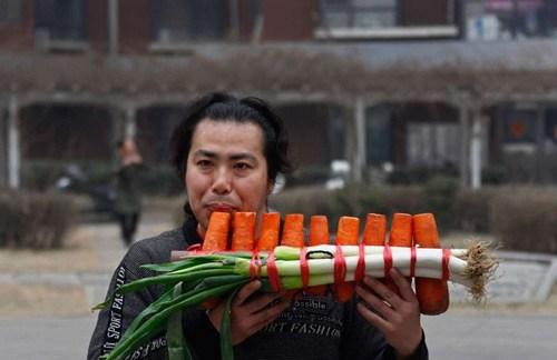 vegetables wtf instruments funny - 7693945088