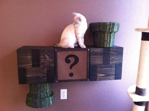 design,nerdgasm,Cats,Super Mario bros,funny