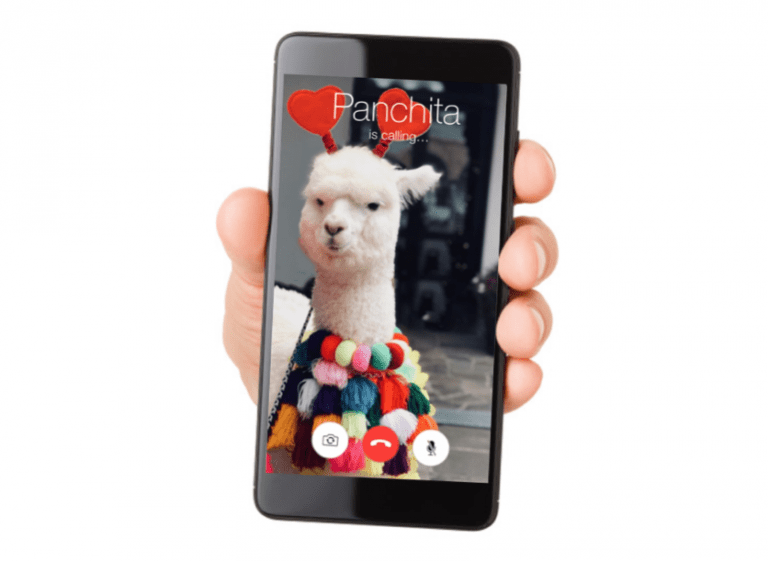 llama baby video call Valentines day - 7700997